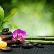 Workshop de feng-shui la Bucuresti