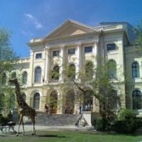 Muzeul National de Istorie Naturala Grigore Antipa, luat cu asalt de vizitatori